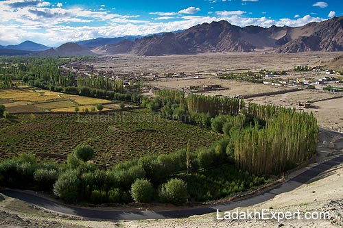 view-from-thiksey-monastery